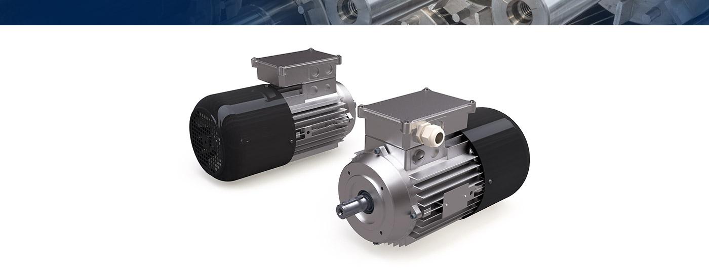 Motori Asynchrone Bremsmotoren