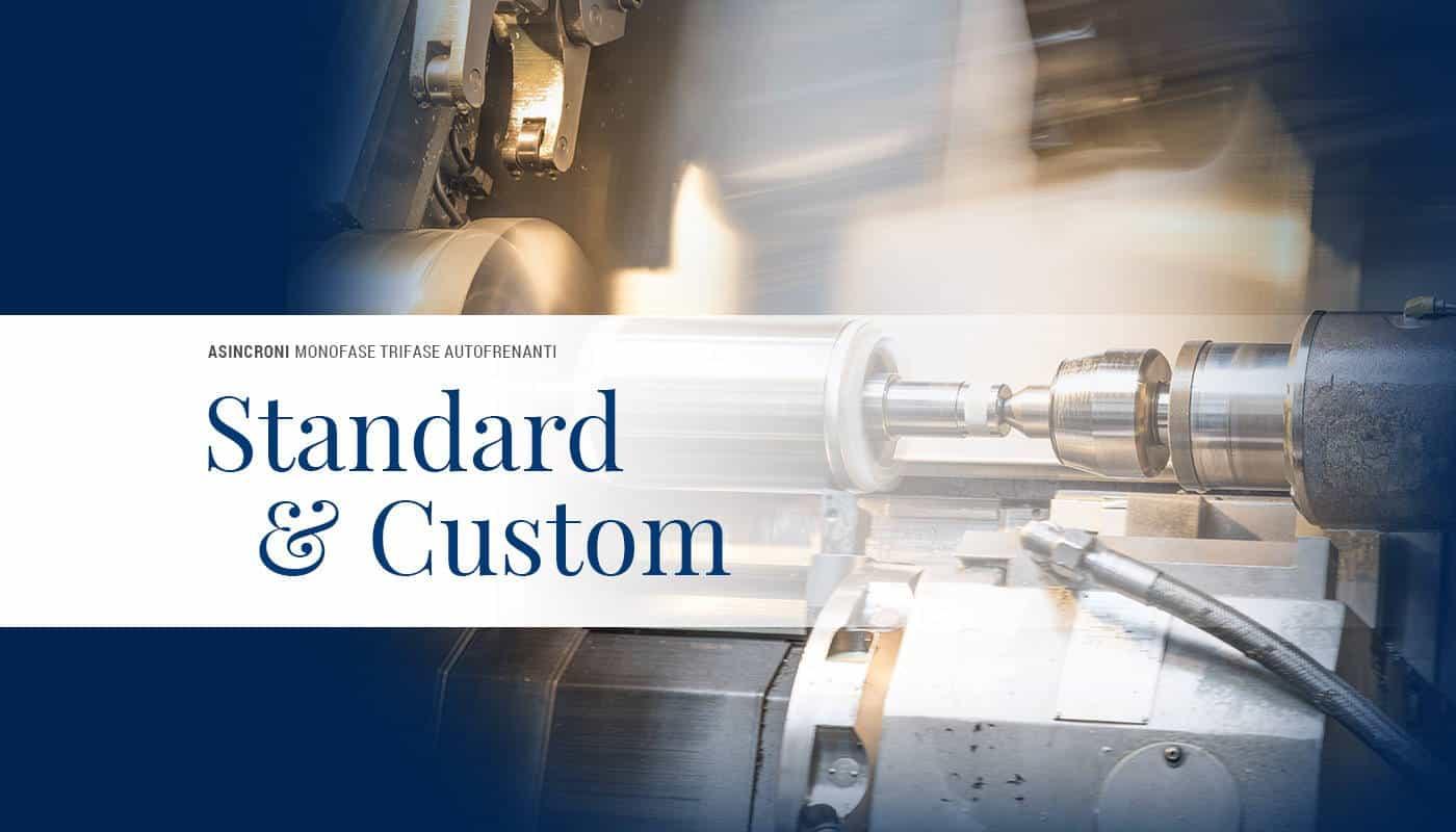 Motori Standard e Customizzati