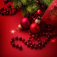 from 24rd of December till 06th of January Moratto will be closed for holidays.