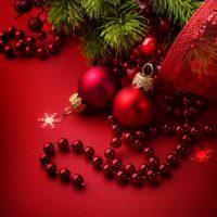 Dal 24 Dicembre al 6 Gennaio la Moratto srl rimarrà chiusa per le festività Natalizie.